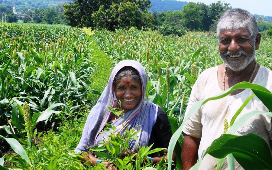 India's Agricultural bill